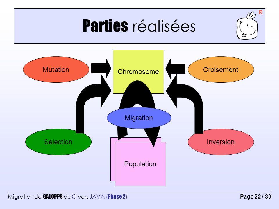 Parties réalisées Chromosome Mutation Croisement Migration Sélection