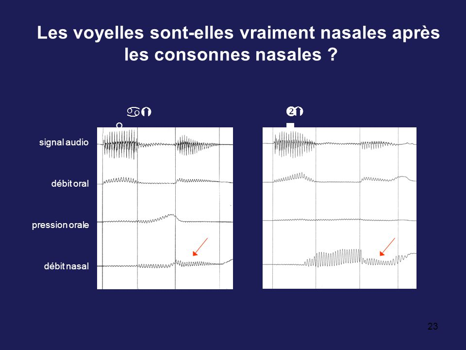 Les voyelles sont-elles vraiment nasales après les consonnes nasales