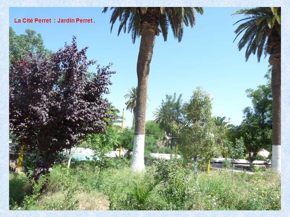 La Cité Perret : Jardin Perret .