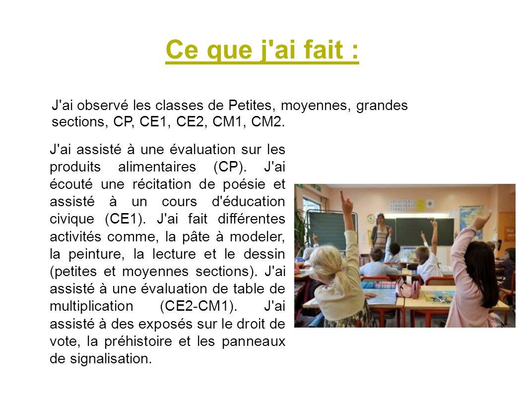 Ce que j ai fait : J ai observé les classes de Petites, moyennes, grandes sections, CP, CE1, CE2, CM1, CM2.
