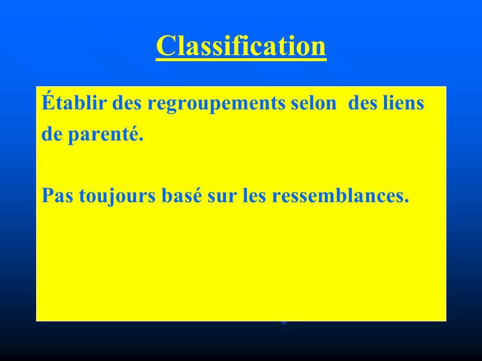 Classification Établir des regroupements selon des liens de parenté.