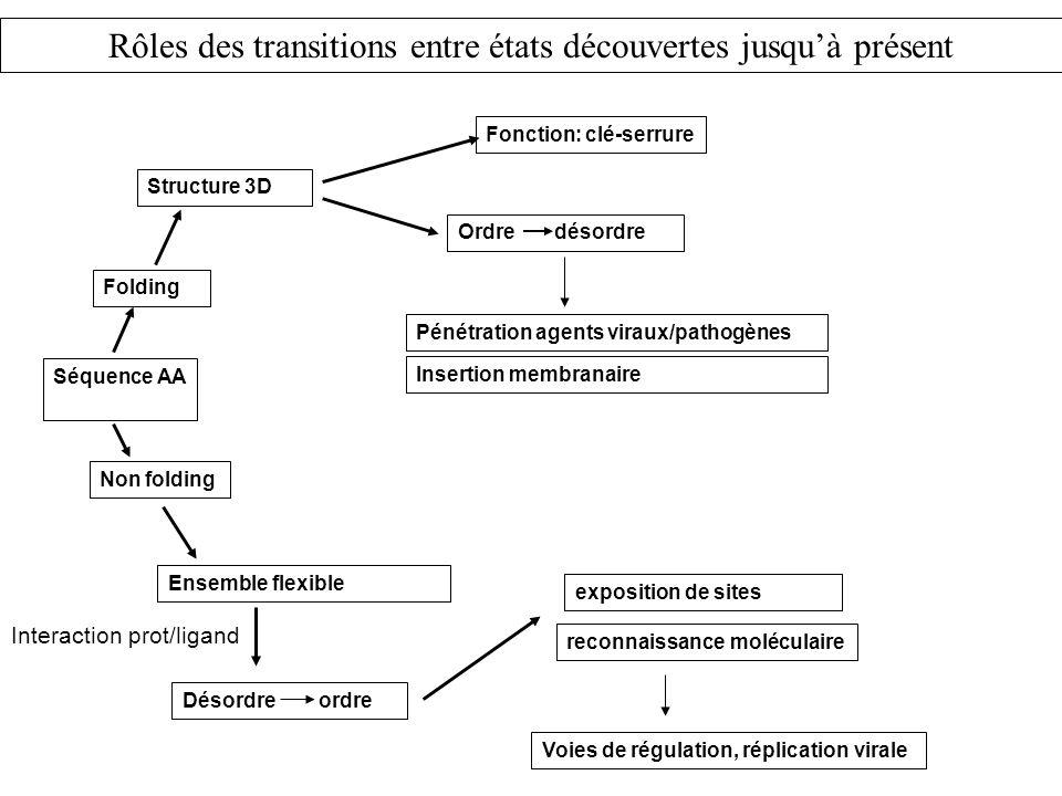 Rôles des transitions entre états découvertes jusqu'à présent