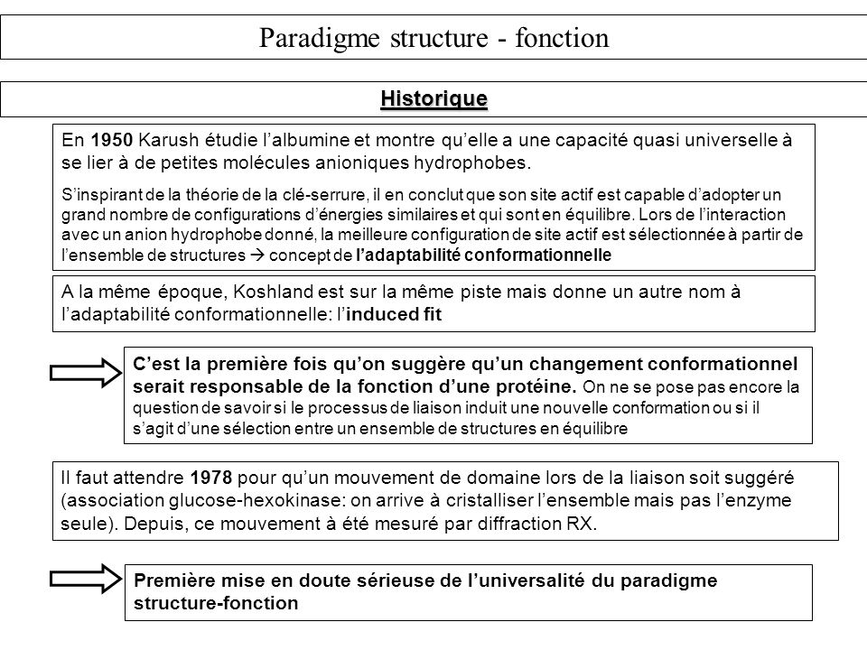 Paradigme structure - fonction