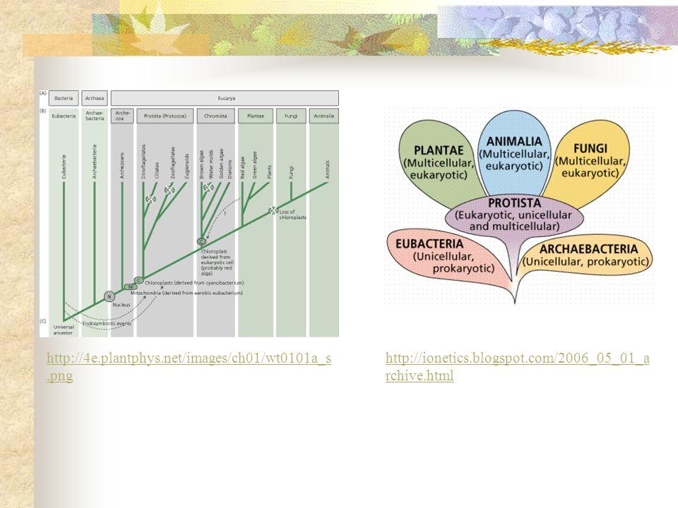 http://4e.plantphys.net/images/ch01/wt0101a_s.png http://ionetics.blogspot.com/2006_05_01_archive.html.
