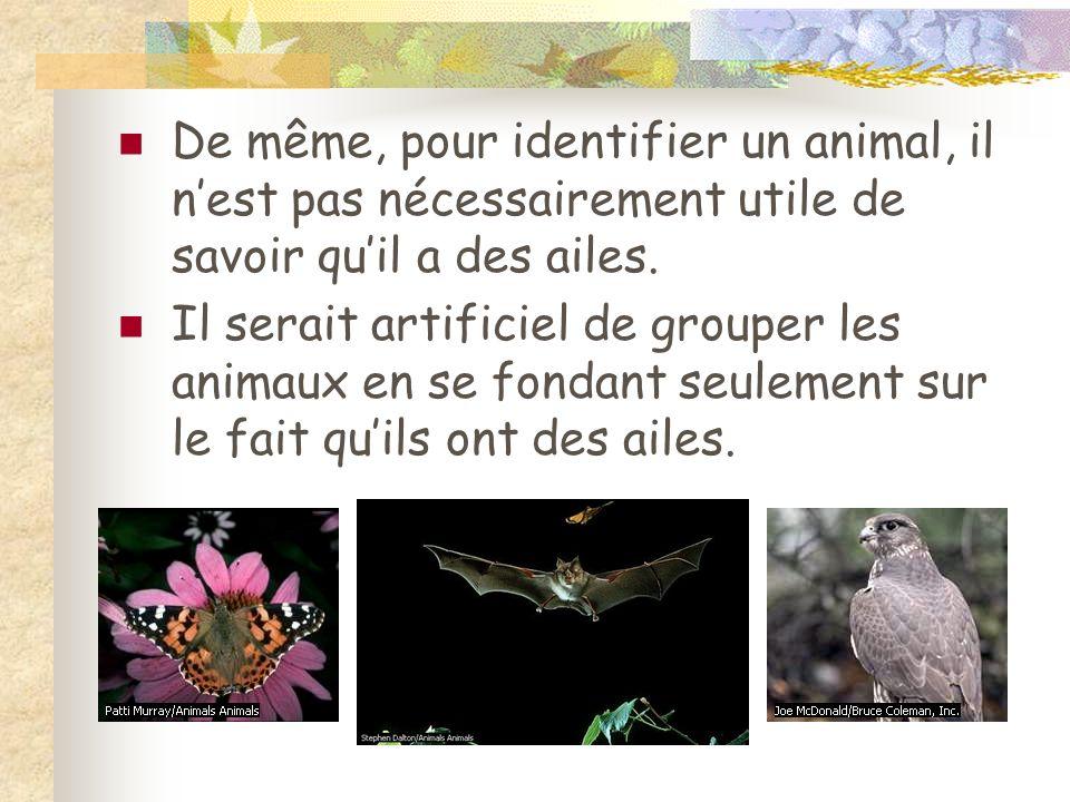 De même, pour identifier un animal, il n'est pas nécessairement utile de savoir qu'il a des ailes.