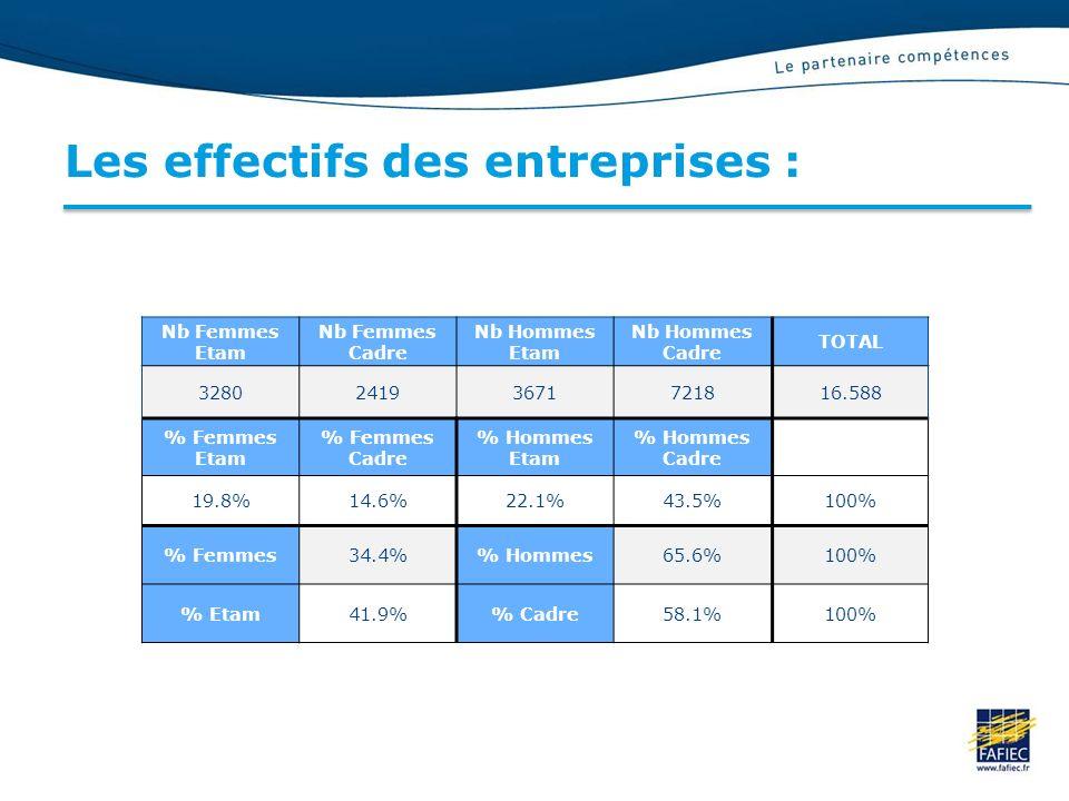 Les effectifs des entreprises :