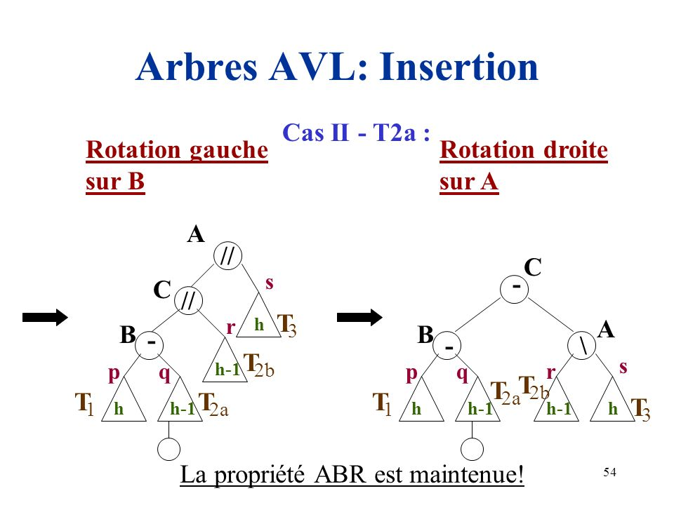Arbres AVL: Insertion Cas II - T2a : Rotation gauche sur B