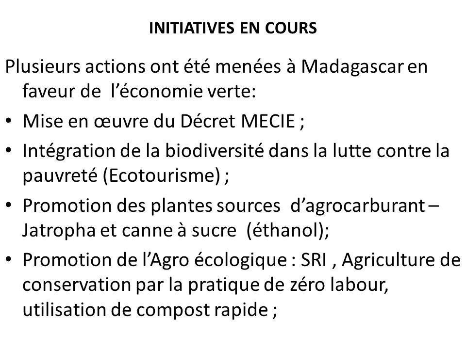 Mise en œuvre du Décret MECIE ;
