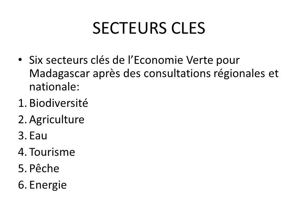 SECTEURS CLES Six secteurs clés de l'Economie Verte pour Madagascar après des consultations régionales et nationale: