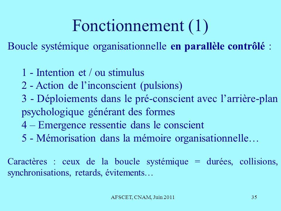 Fonctionnement (1) Boucle systémique organisationnelle en parallèle contrôlé : 1 - Intention et / ou stimulus.