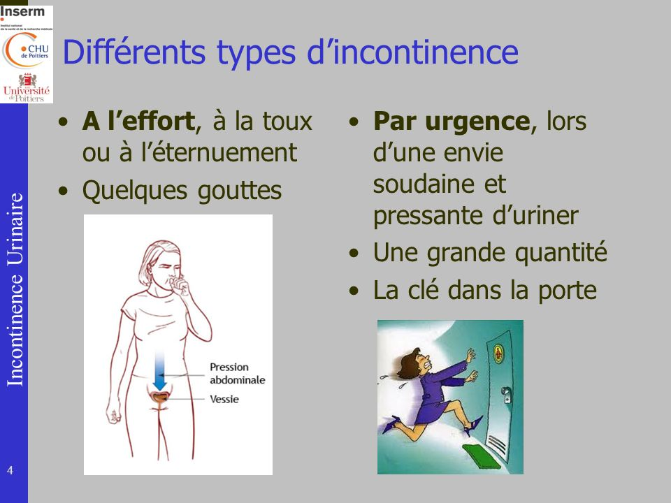 Différents types d'incontinence