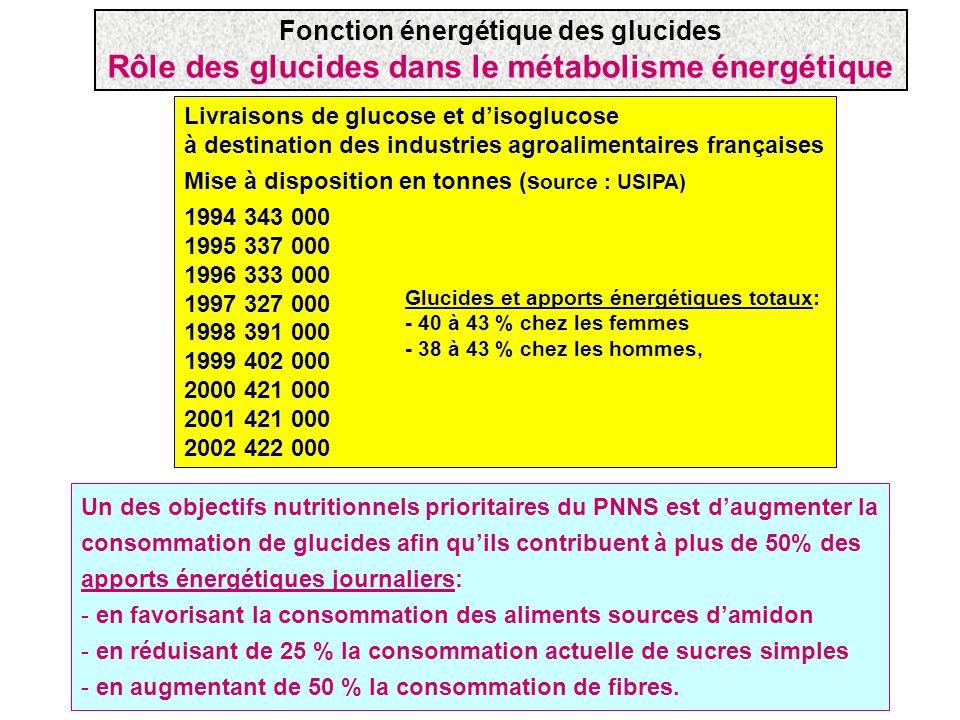 Rôle des glucides dans le métabolisme énergétique