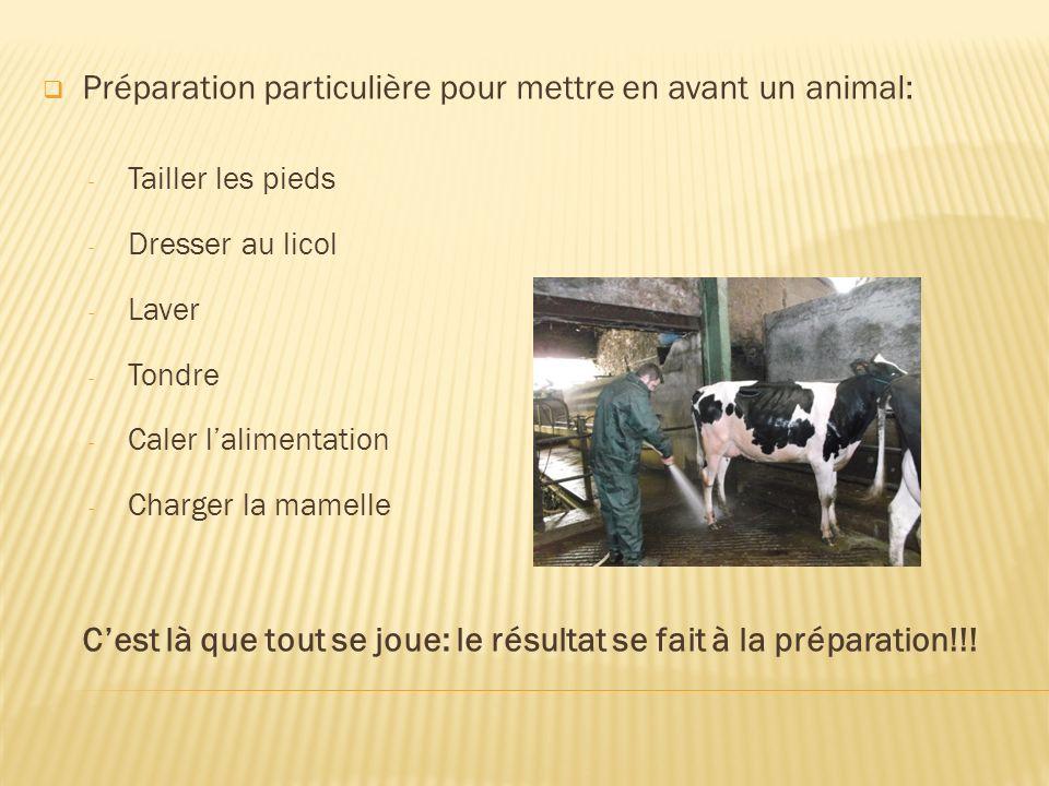 Préparation particulière pour mettre en avant un animal: