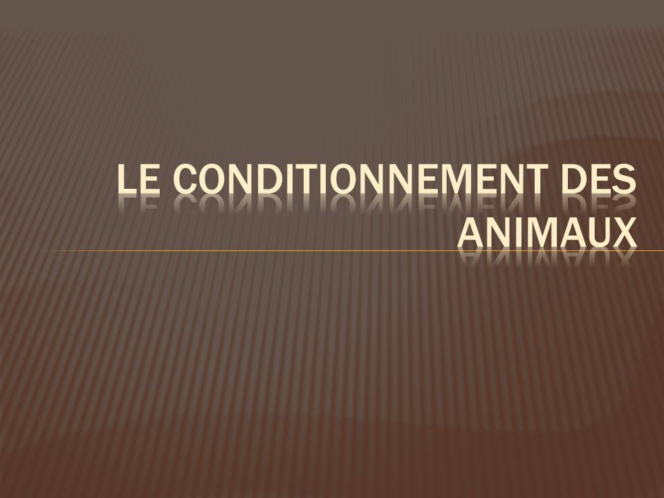 Le conditionnement des animaux