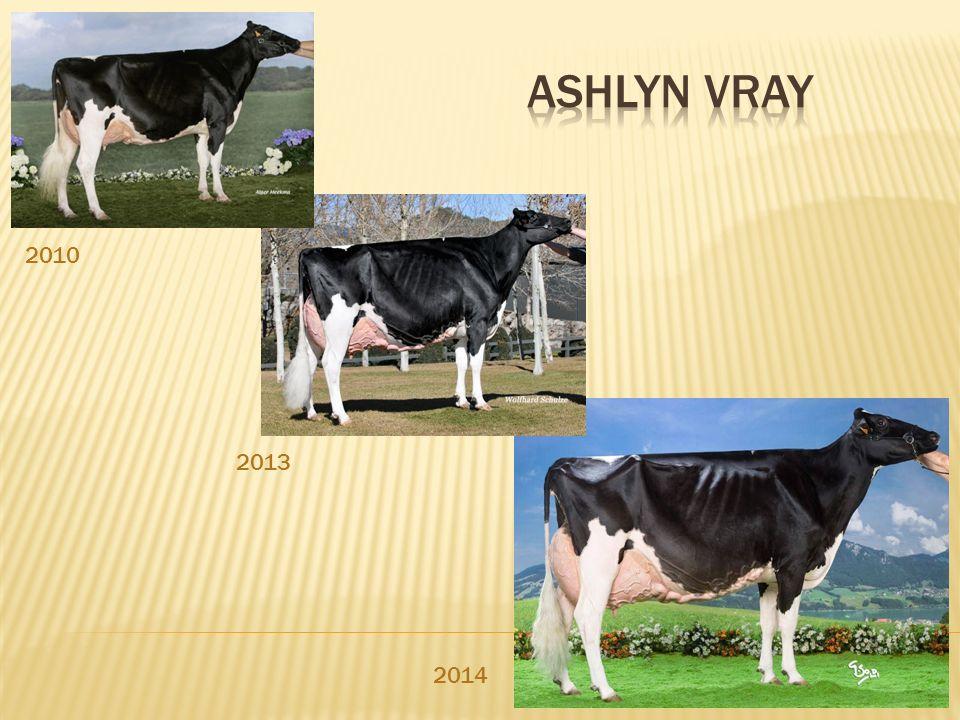 Ashlyn Vray 2010 2013 2014