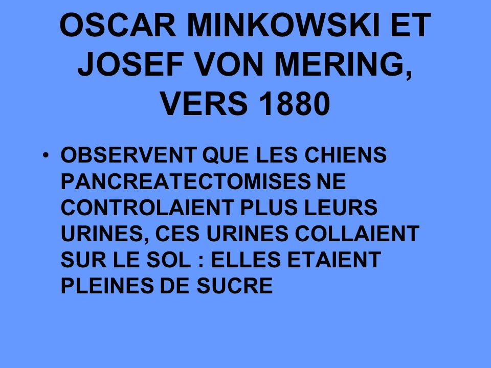 OSCAR MINKOWSKI ET JOSEF VON MERING, VERS 1880