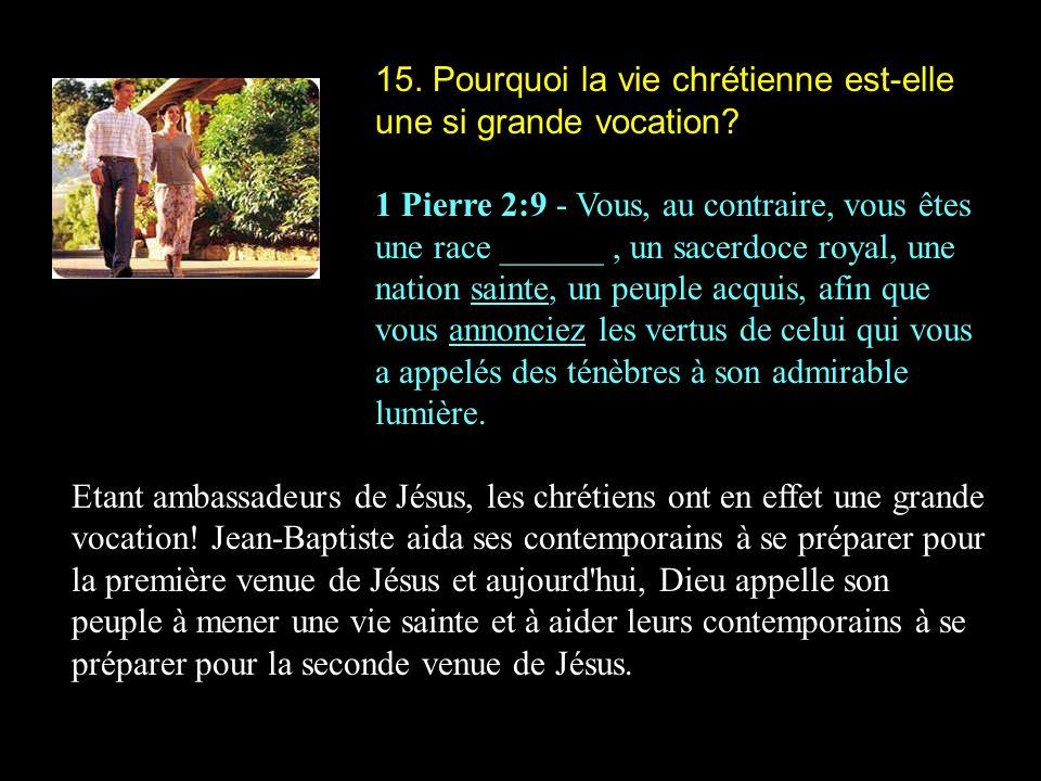 15. Pourquoi la vie chrétienne est-elle une si grande vocation