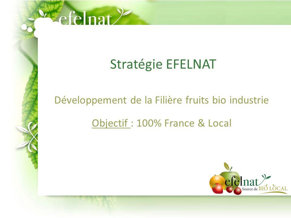Stratégie EFELNAT Développement de la Filière fruits bio industrie
