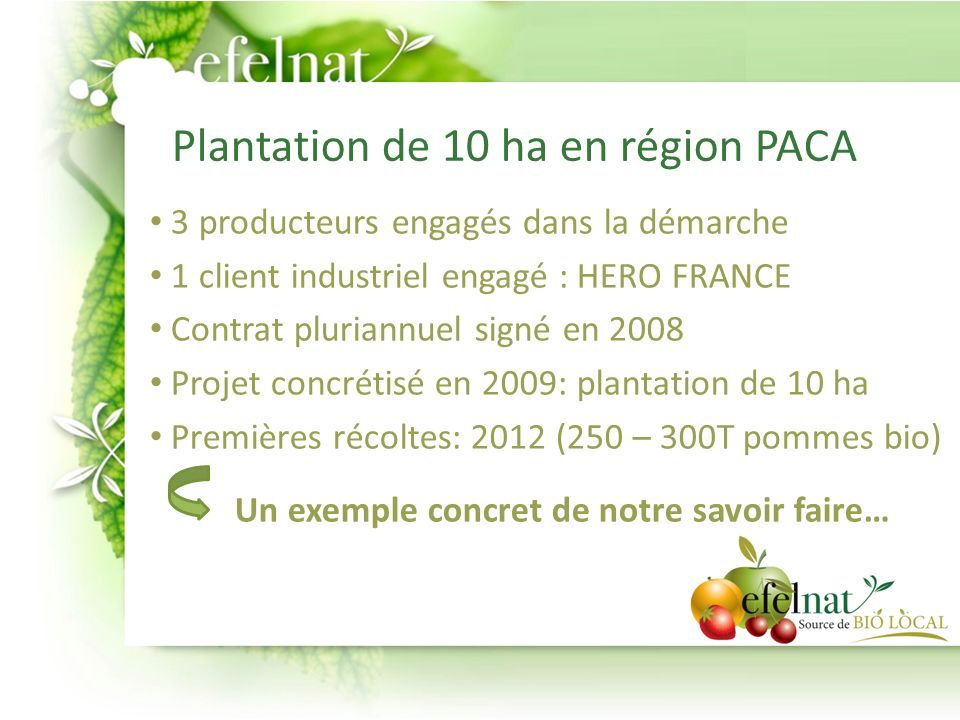 Plantation de 10 ha en région PACA