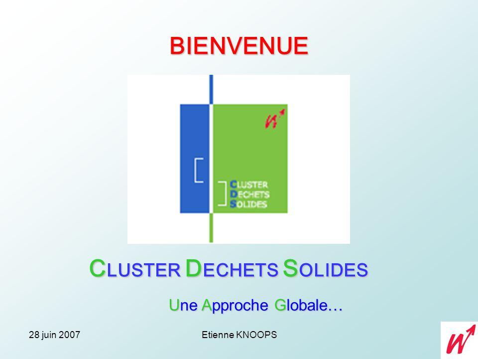 CLUSTER DECHETS SOLIDES