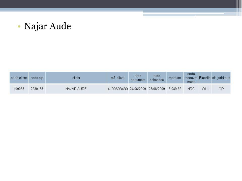 Najar Aude 4L90608480 OUI CP code client code cip client ref. client