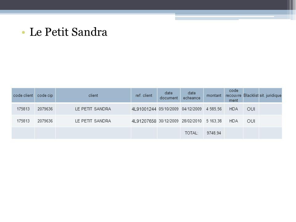 Le Petit Sandra 4L91001244 OUI 4L91207658 code client code cip client