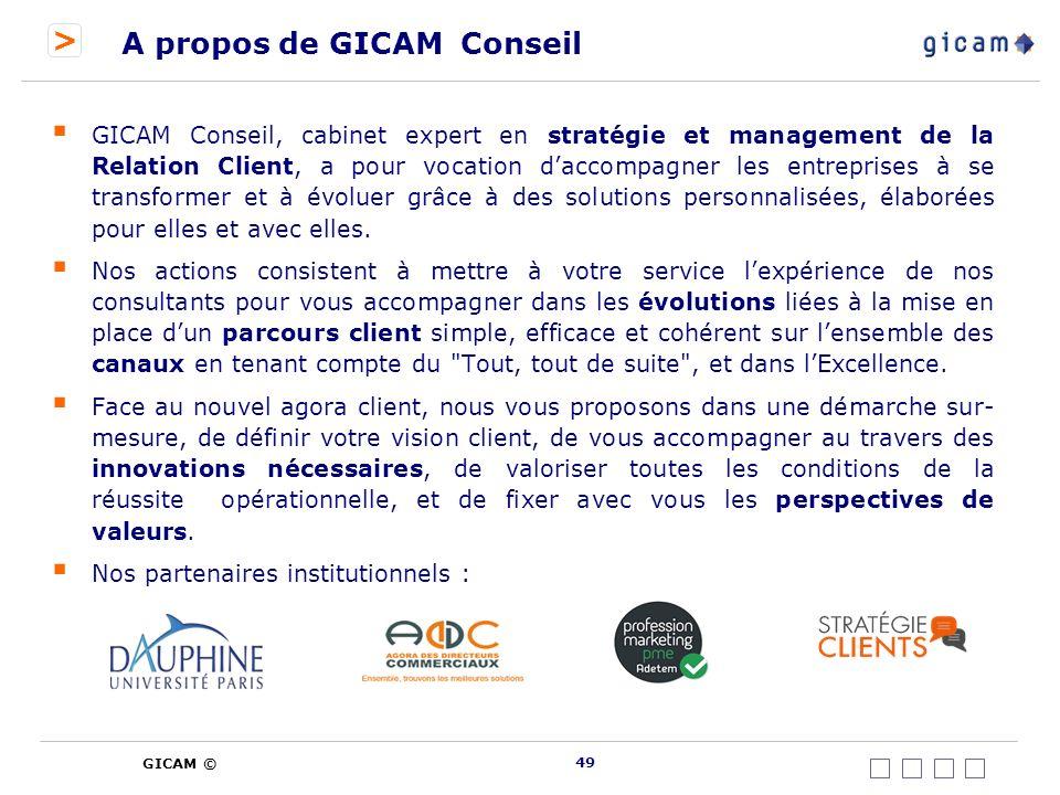 A propos de GICAM Conseil