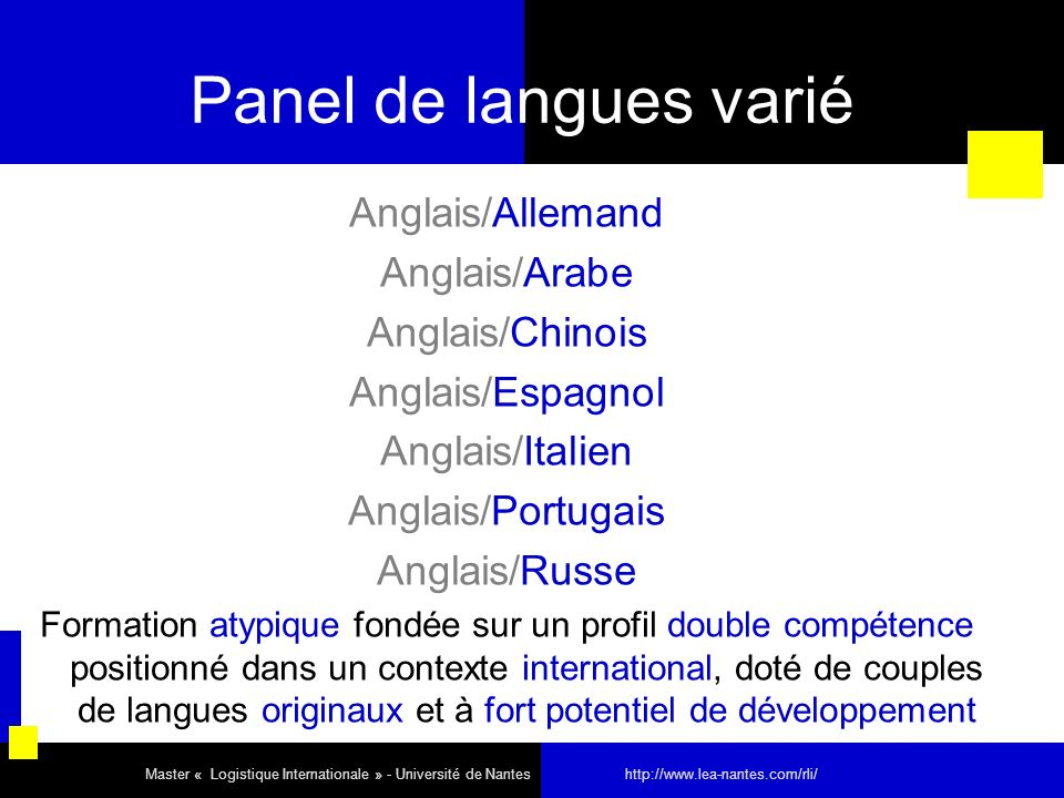 Panel de langues varié Anglais/Allemand Anglais/Arabe Anglais/Chinois