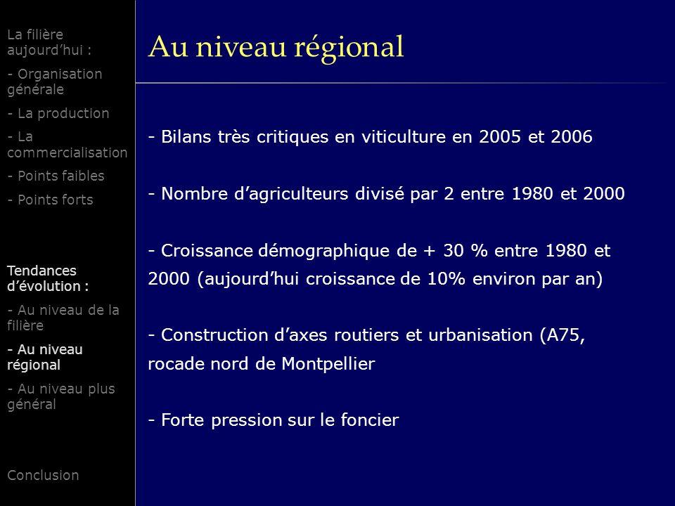 Au niveau régional La filière aujourd'hui : - Organisation générale. - La production. - La commercialisation.