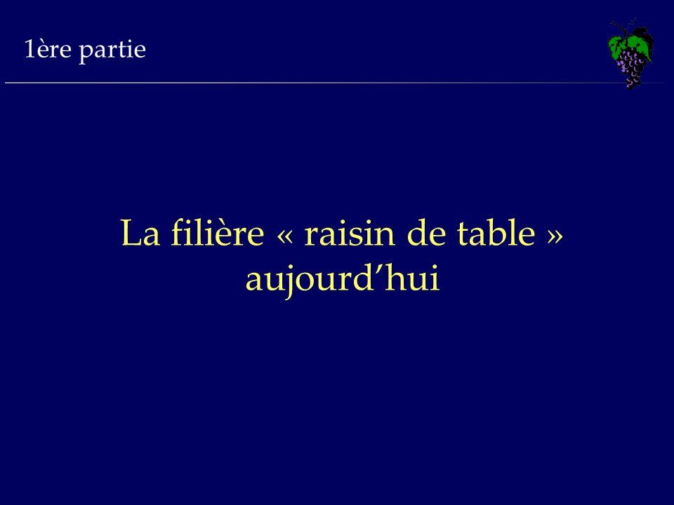 La filière « raisin de table » aujourd'hui