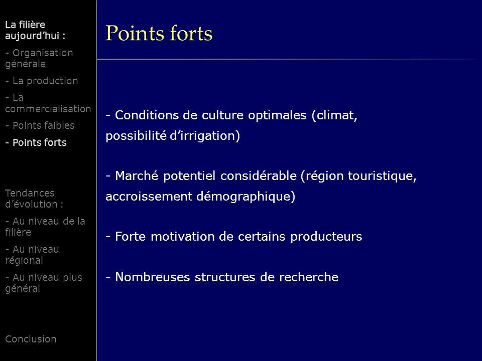 Points forts La filière aujourd'hui : - Organisation générale. - La production. - La commercialisation.