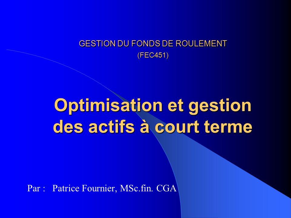 Par : Patrice Fournier, MSc.fin. CGA