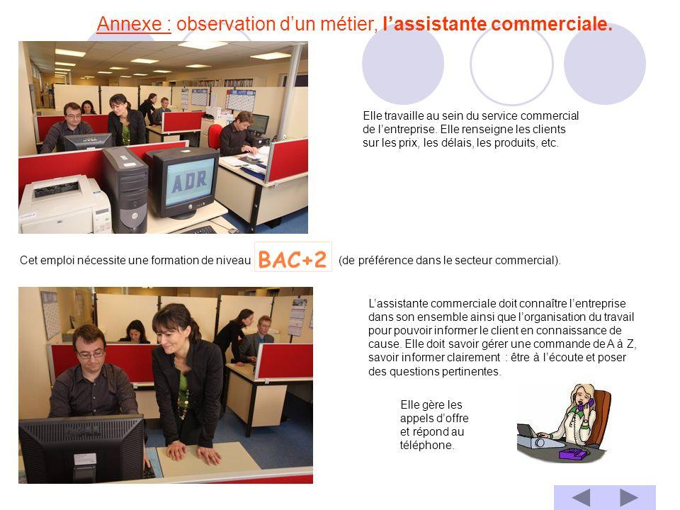 Annexe : observation d'un métier, l'assistante commerciale.