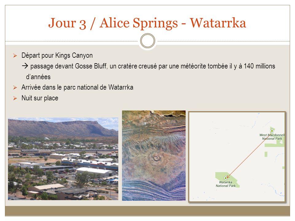 Jour 3 / Alice Springs - Watarrka