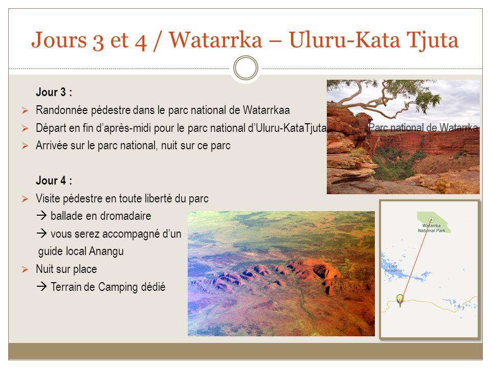 Jours 3 et 4 / Watarrka – Uluru-Kata Tjuta