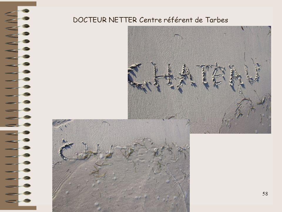 DOCTEUR NETTER Centre référent de Tarbes