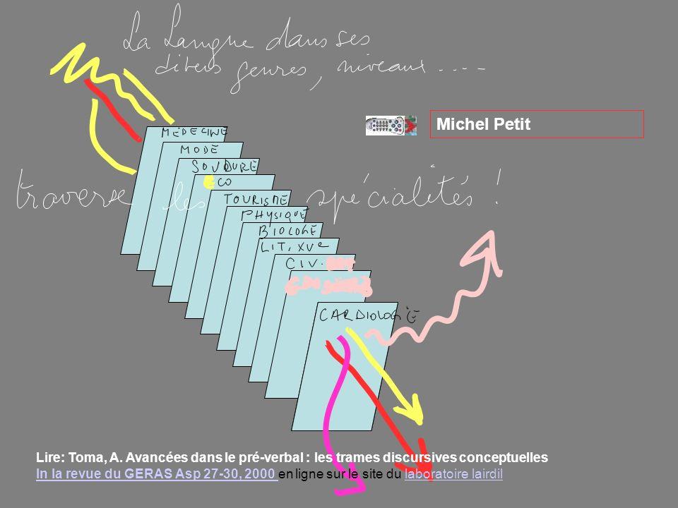 Michel Petit v. v.
