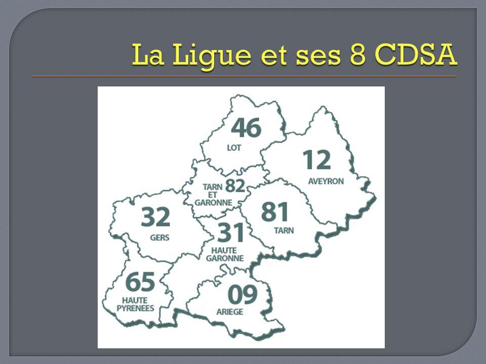 La Ligue et ses 8 CDSA