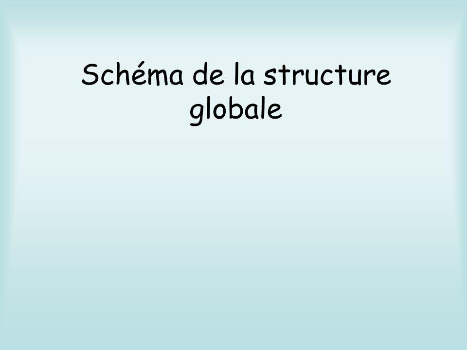 Schéma de la structure globale