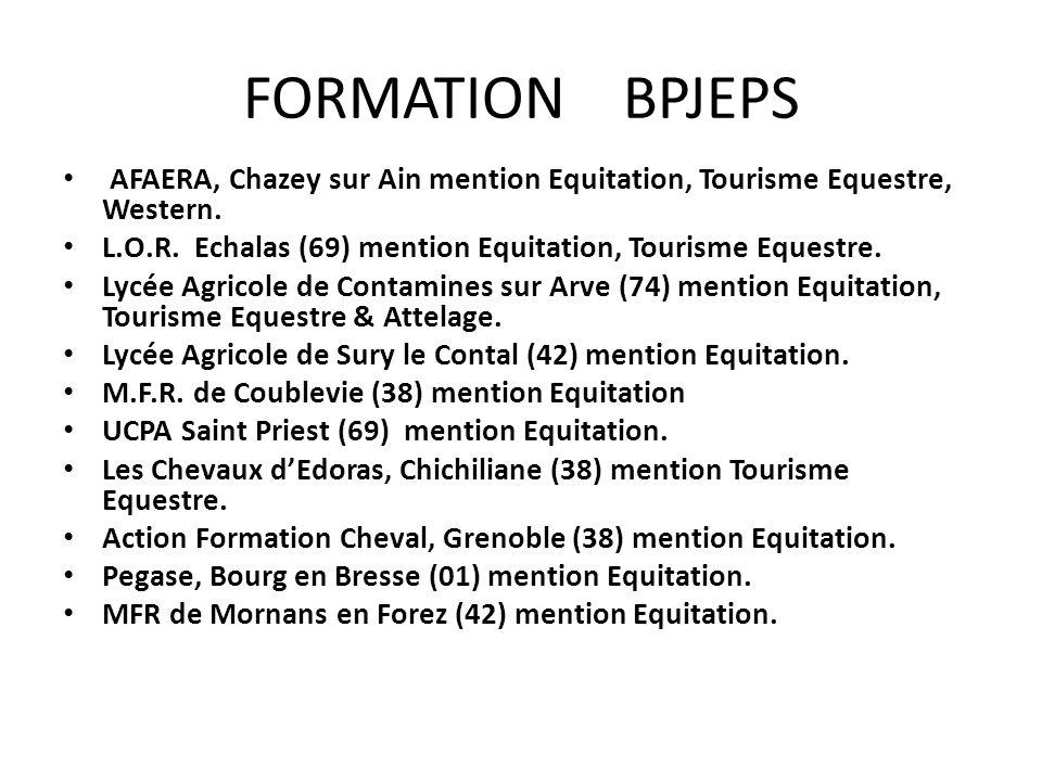 FORMATION BPJEPS AFAERA, Chazey sur Ain mention Equitation, Tourisme Equestre, Western.
