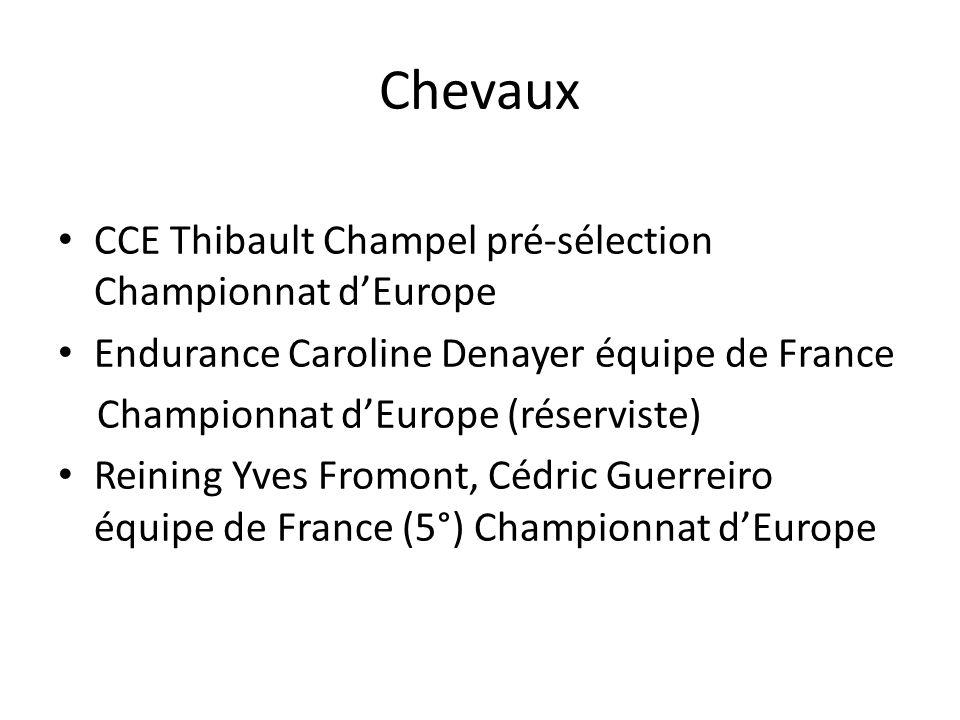 Chevaux CCE Thibault Champel pré-sélection Championnat d'Europe