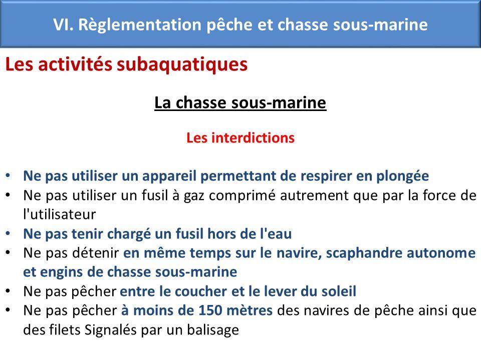 VI. Règlementation pêche et chasse sous-marine