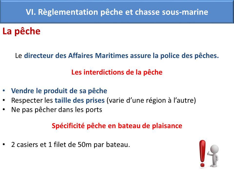 La pêche VI. Règlementation pêche et chasse sous-marine