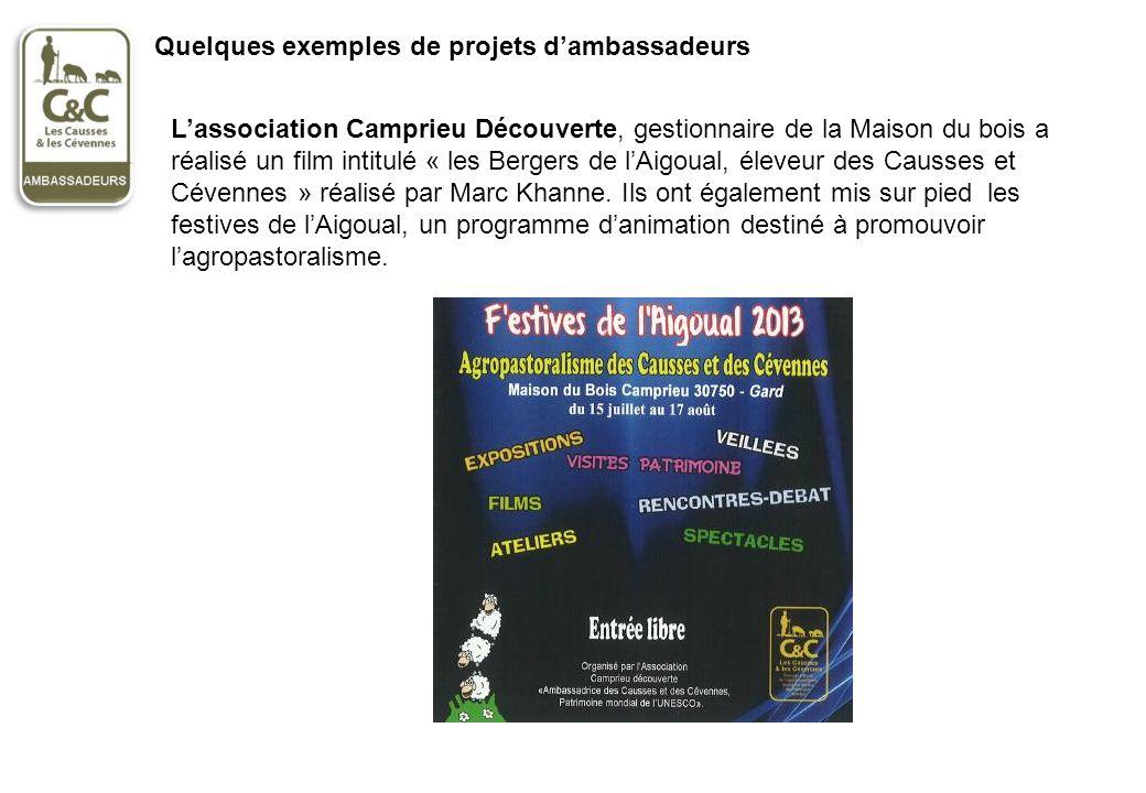 Quelques exemples de projets d'ambassadeurs