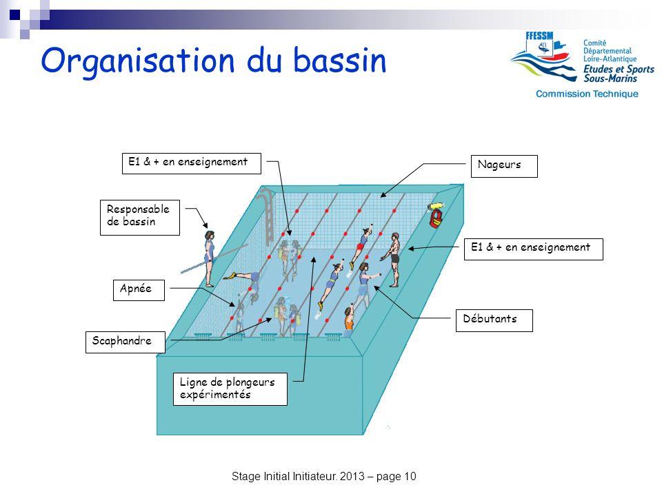 Organisation du bassin