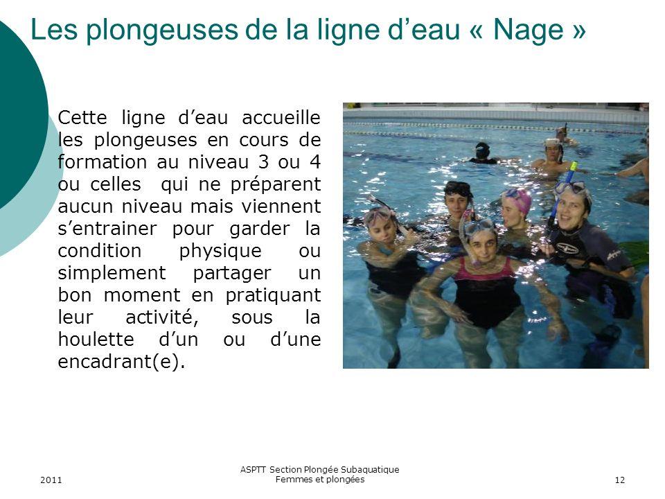 Les plongeuses de la ligne d'eau « Nage »