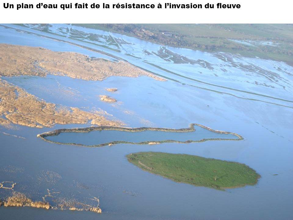 Un plan d'eau qui fait de la résistance à l'invasion du fleuve