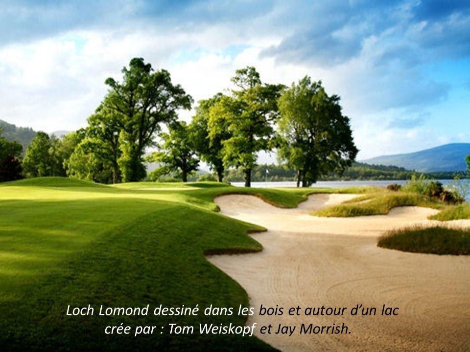 Loch Lomond dessiné dans les bois et autour d'un lac
