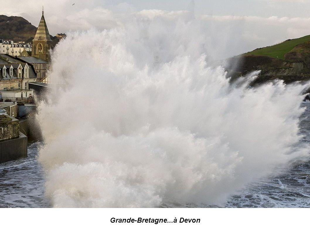 Grande-Bretagne...à Devon