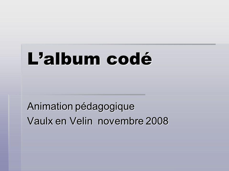 Animation pédagogique Vaulx en Velin novembre 2008